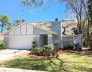 13907 Cherry Creek Drive, Tampa image