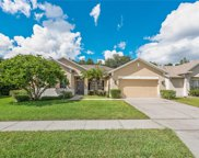13242 Old Dock Road, Orlando image