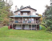 10211 Narrows Dr, Anderson Island image