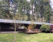 15701 STAGECOACH  RD, Swisshome image