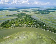 820 Distant Island  Drive, Beaufort image