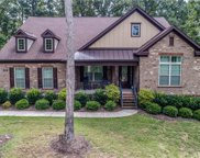 11702  Egrets Point Drive, Charlotte image
