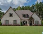 525 Willow Branch Circle, Chelsea image