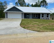 101 Periwinkle Ln, Pell City image