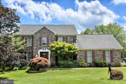 3431 Winterberry Ct, Reisterstown image