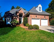 10326  Newberry Park Lane, Charlotte image