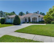 4997 Championship Cup Lane, Spring Hill image