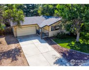 507 Horsetooth Mountain Ct, Windsor image