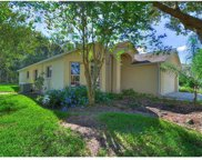 19117 Chemille Drive, Lutz image