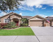 7314 Carrington Oaks Lane, Apollo Beach image