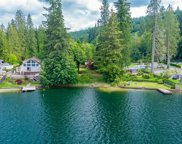 24123 S Lake Roesiger Rd, Snohomish image