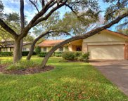 11800 Three Oaks Trl, Austin image