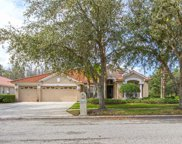 10248 Arbor Side Drive, Tampa image