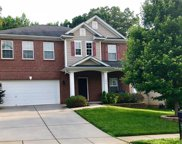 12825  Lake Erie Lane, Charlotte image
