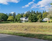 4280 Pine Hill Drive, Harbor Springs image