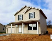 110 Hunters Pointe (Lot 254), Winfield image