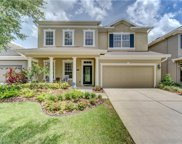 6413 Sea Lavender Lane, Tampa image