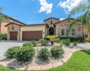 13837 Moonstone Canyon Drive, Riverview image