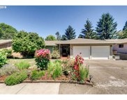 245 KASHMIR  CT, Salem image