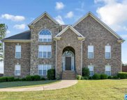 320 South Haven Cir, Odenville image