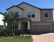 16303 Hyde Manor Drive, Tampa image