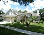10118 Whisper Pointe Drive, Tampa image
