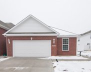 16318 Meadowlands  Court, Westfield image