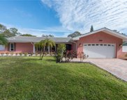 1001 Grovewood Court, Clearwater image