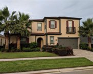 14205 Cheshire Acres Place, Tampa image