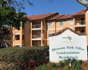 3004 Parkway Boulevard Unit 202, Kissimmee image