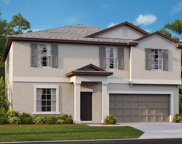 5447 Rainwood Meadows Drive, Apollo Beach image