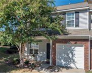 10525  Bunclody Drive, Charlotte image