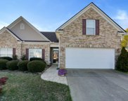 5 Coral Bell Court, Simpsonville image