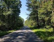 3487 Forest, Towamensing Township image