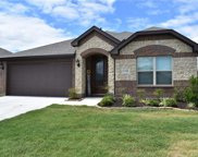 1108 Foxtail Drive, Anna image