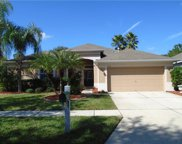 8218 Swann Hollow Drive, Tampa image