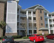 4894 Luster Leaf Cir, Unit 204 Unit 204, Myrtle Beach image