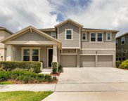 5608 Mangrove Cove Avenue, Winter Garden image