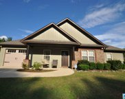 436 Red Valley Rd, Remlap image