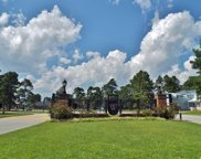 1740 Singing Rose Dr, Myrtle Beach image