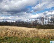 700 Mount Hebron Rd Unit 4 acres, Blountsville image