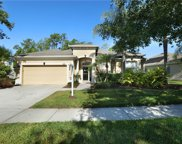10336 Sandy Marsh Lane, Orlando image