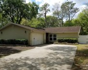 2319 Towery Trail, Lutz image