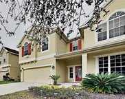 10922 Observatory Way, Tampa image