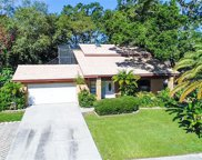 499 Winding Willow Drive, Palm Harbor image