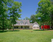 178 Hickory Nut Road, Quitman image