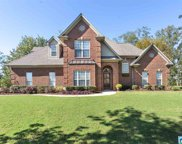 8552 Carrington Lake Crest, Trussville image