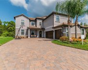 19119 Shalott Court, Land O' Lakes image