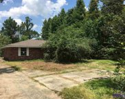 42338 Church Point Rd, Gonzales image