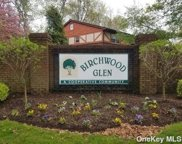 14 Glen Hollow  Drive Unit #E51, Holtsville image